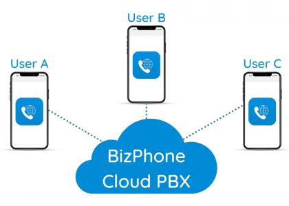 BizPhone Diagram2