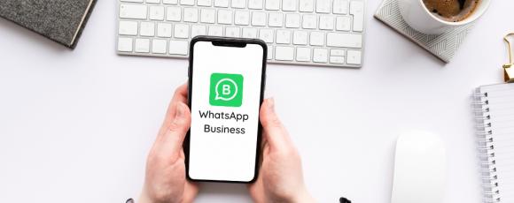 WhatsApp Business phone